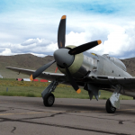 Hawker Sea Fury For Sale